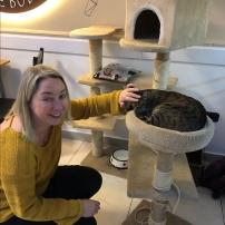 cat sitter 5