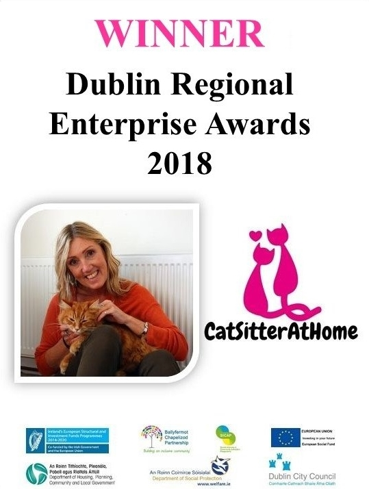 Winner Dublin Enterprise Awards 2018 cat sitter
